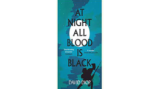All blood is black book cover